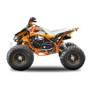 XL quad enfant ado Speedbird RS nitro 125 semi automatique
